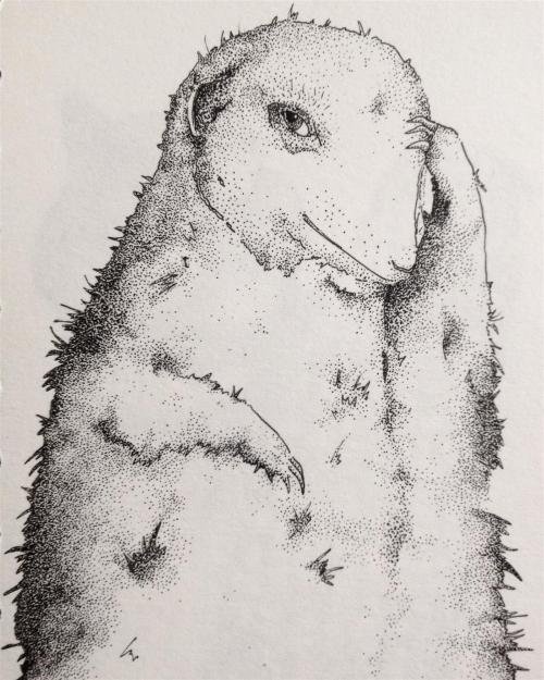 Annie Clough-Hillman, Untitled