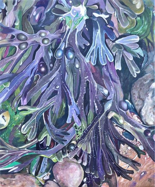 Coherton-Robinson-Sheila-Seaweed-Cromer-Low-Tide..jpg