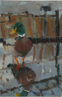 Duck and Reflection, Lake District.jpg