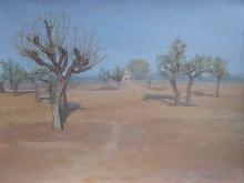 Fleming-Peter-Desert-Dawn.jpg