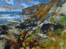 Forsey-Chris-Rocky Edge, Tregardock Beach.jpg