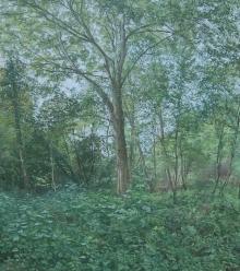 Frood-Caroline-Verdant-Woods.jpg
