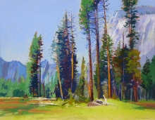 Goodman-Sheila-The Valley, Yosemite.jpg