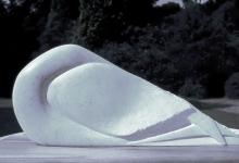 Goold-Madeline-Gannet Sleeping Form.jpg