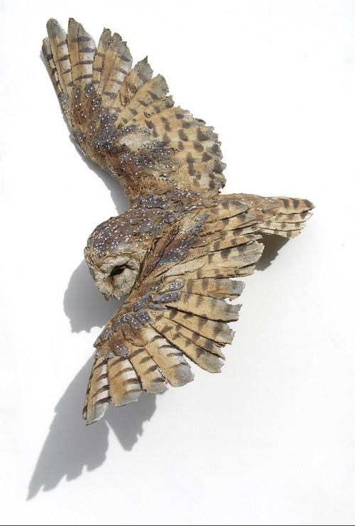 Griffiths-Simon-Barn-Owl in flight.jpg