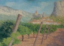 Halsby-Julian-Vineyards at St Jean de Bueges..jpg