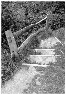 Keshavarz-Dominic-Coastal Path.jpg