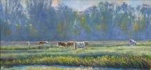 King-Andrew-Cattle-and-Mist-Halvergate.jpg