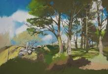 Lowenhoff-Barry-Connmara-Trees.jpg