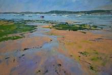 Norman-Michael-Low Tide, Exe Estuary.jpg