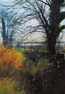Parfitt-David A-Wetland Sun.jpg