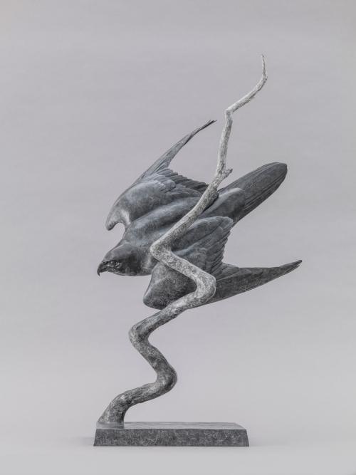 Peregrine_II_Lightning_Bolt_01w.jpg
