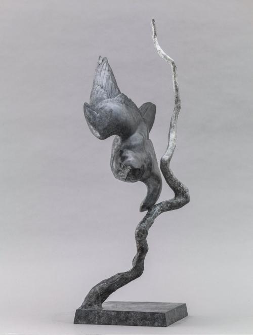 Peregrine_II_Lightning_Bolt_05w.jpg