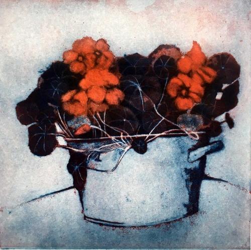Perring-Susie-Red-Nasturtiums.jpg