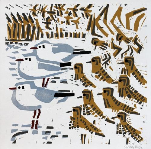 Poole-Greg-Black-headed-Gulls-Golden-Plover.jpg
