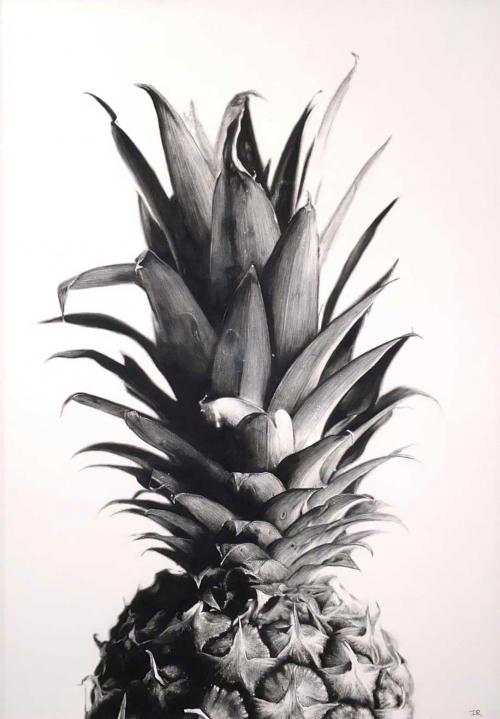 Rawling-Ian-Pineapple.jpg