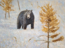 Rees-Darren-Bear-and-Rusty-Pine.jpg