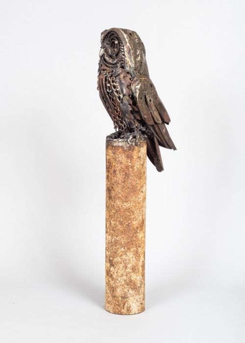Shear Tawny Owl LR (15).jpg