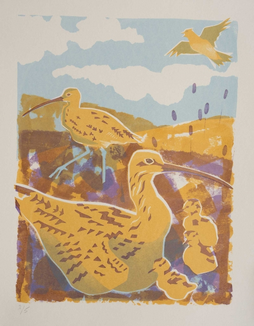 Smith-Jane-Curlew.jpg