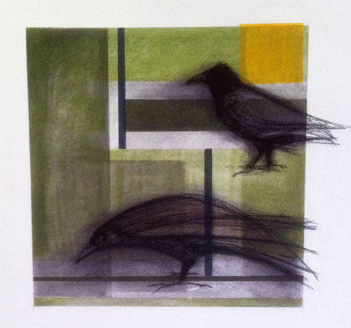 Crows with Yellow Square