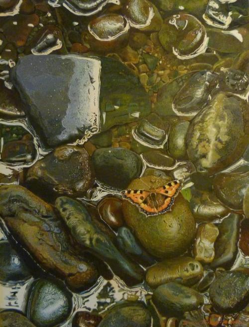 Thornber-Edwin-Small-Tortoiseshell-Summer.jpg