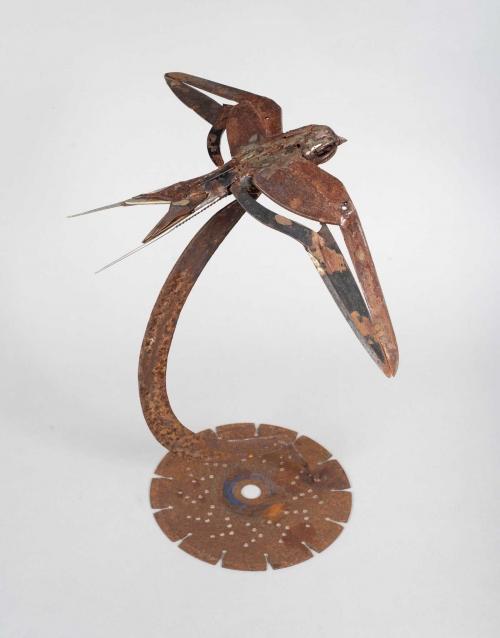 Tweezer-Tailed-Swallow-3.jpg