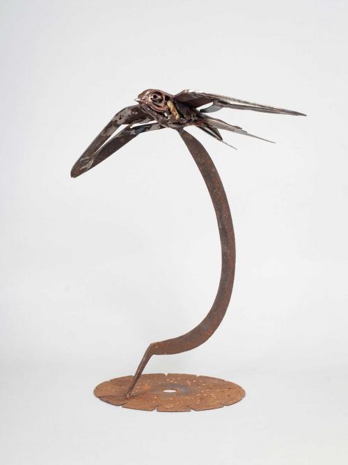 Tweezer-Tailed-Swallow-HR-9.jpg