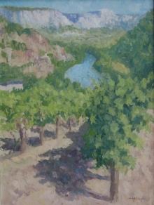 Vineyards Above the Tarn.jpg