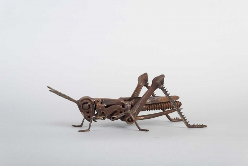 Web-Mead-Harriet-Grasshopper-11.jpg