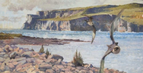 Wootton-Tim-Rousay From Grory, Eynhallow - With Arctic Skuas.jpg