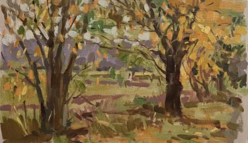 Haidee-Jo Summers Autumn Colour