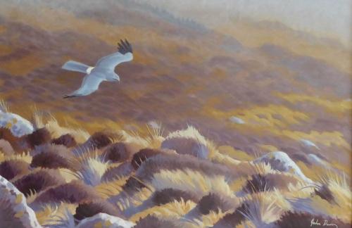 Drifting By by John Davis SWLA buy art buy now