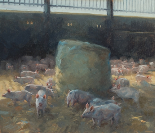 Frances bell Pigs Buy Art Buy Now