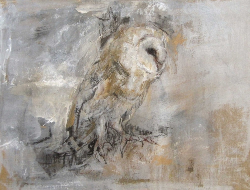 Barn Owl in Flight Lucie Geffre