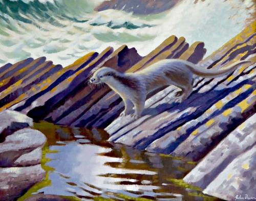 A Hebridean Otter by John Davis SWLA buy art buy now