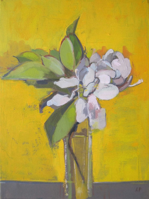 """Apple Blossom"" Oil on Canvas by Eve Pettitt"""