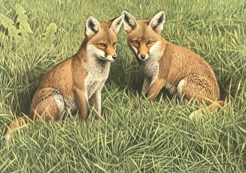 Simon-Turvey-Foxcubs.jpg