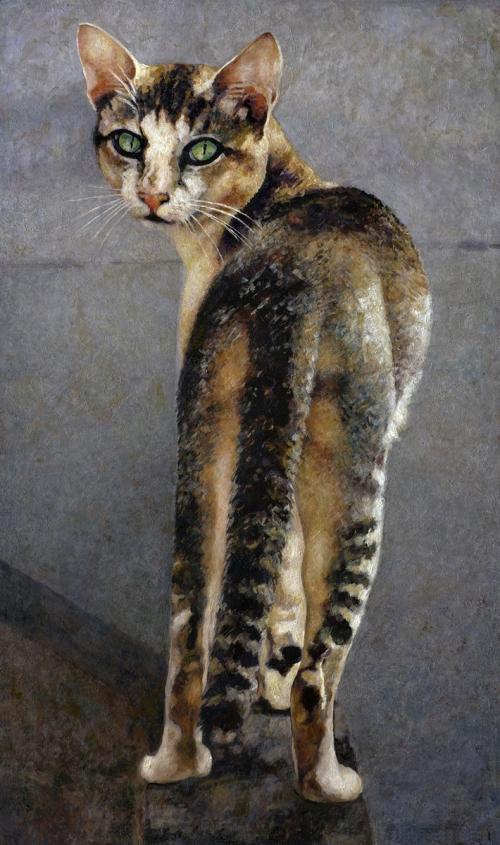 VARKALA-CAT.jpg
