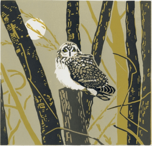 """The Reverist Owl"" Linocut Print by Max Angus"