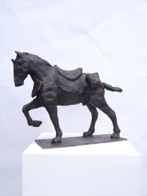 WEB Callum Stannard - Horse.jpg