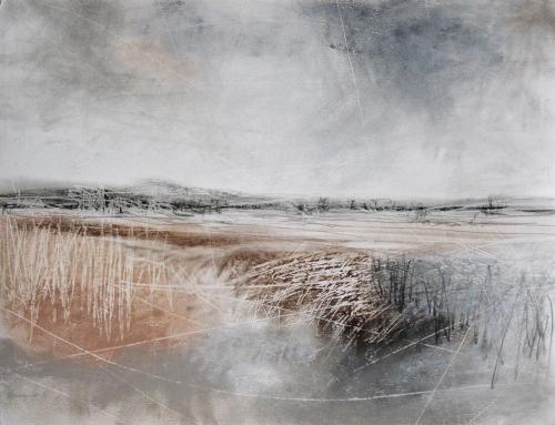 WEB Janine Baldwin - Wild Lands.jpg