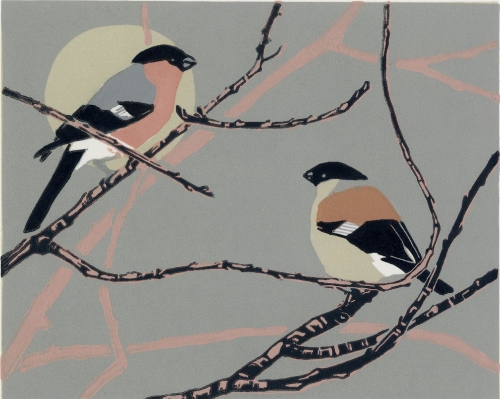 WEB Max Angus - Bullfinches.jpg