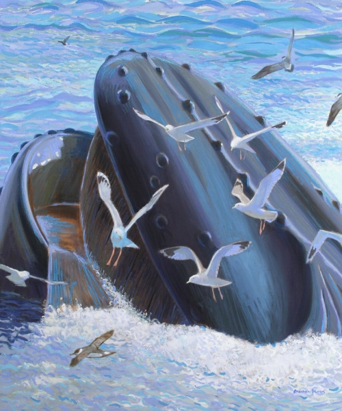 """Bubble-netting Humpback, Stellwagon Bank"" Oil on Canvas by Darren Rees"