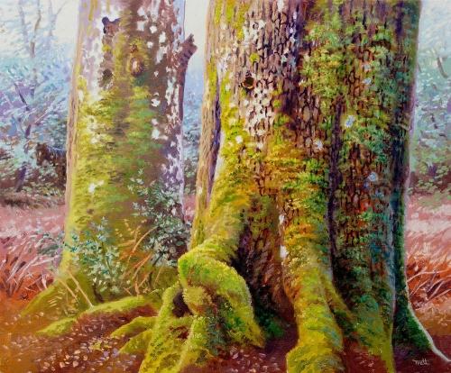 WEB Richard Tratt - The Oak and The Beech.jpg