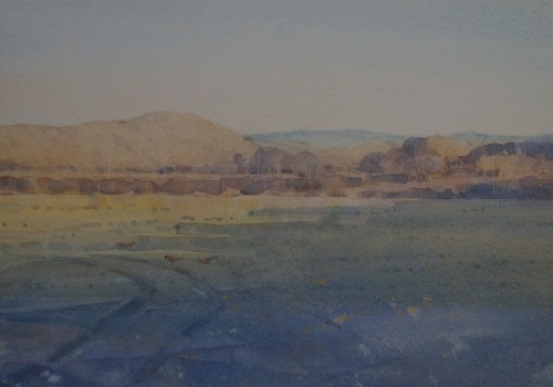 'Late Afternoon, Taw Valley' by Colin Allbrook