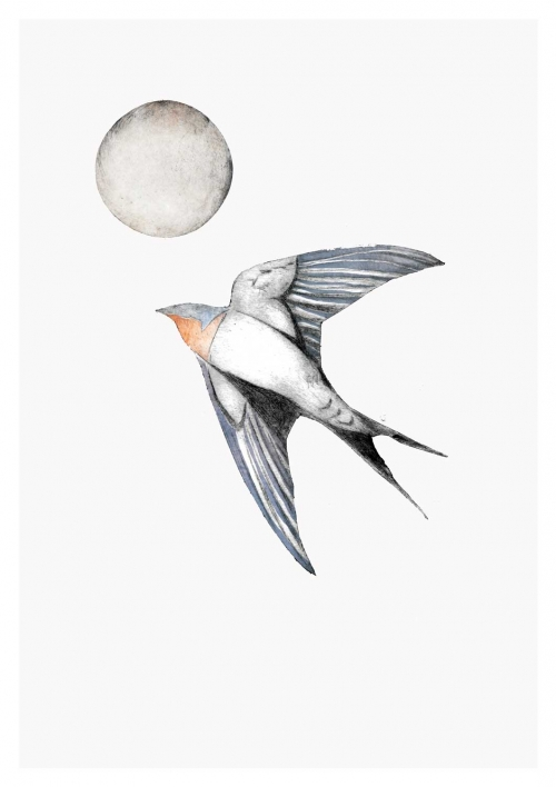 """Swallow II"" Hand-painted drypoint engraving by Beatrice Forshall"