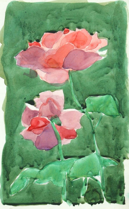 'Rose' pencil and watercolour work by Alexander Goudie