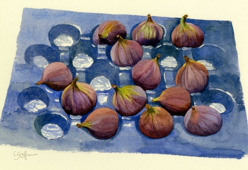 """Fresh Fat Figs"" Watercolour on Paper by Carole Griffin"