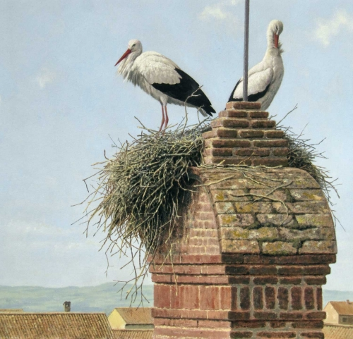"""White Storks, Spain"" Oil on Board by Simon Turvey"
