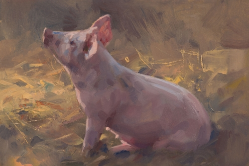 Little Pig by Frances Bell
